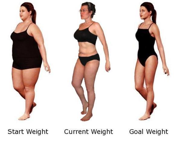 Dieta de las 3 fases - Gordoscom